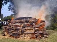 Ile drzewa potrzebne do całopalenia?, było tyle drzewa w Izraelu?